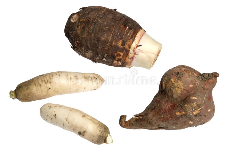 Roodachtig, Bataat en Taro Root stock afbeeldingen