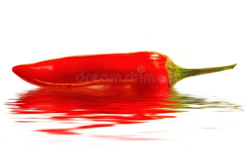 Roodgloeiende Geïsoleerdeh Peper stock foto's