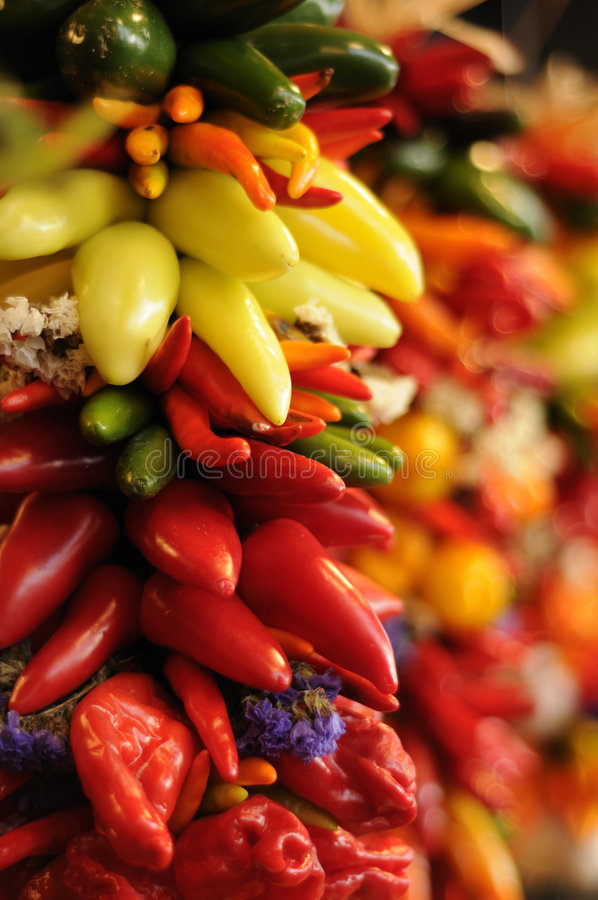 Roodgloeiende ondiepe Spaanse peperspeper stock afbeeldingen