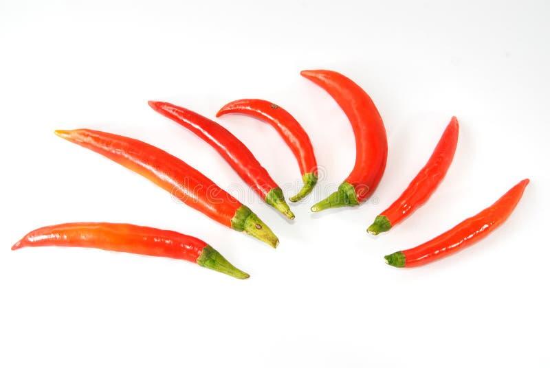 Roodgloeiende Spaanse peper royalty-vrije stock afbeeldingen