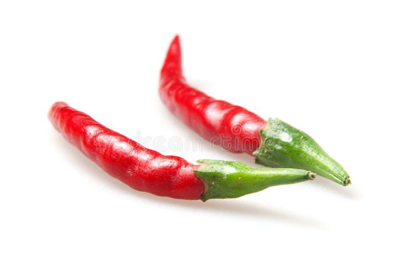 Roodgloeiende Spaanse peperspeper stock foto's