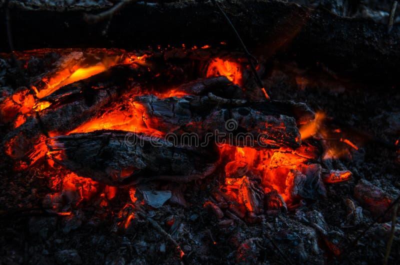 Roodgloeiende steenkolen in de brand stock foto's