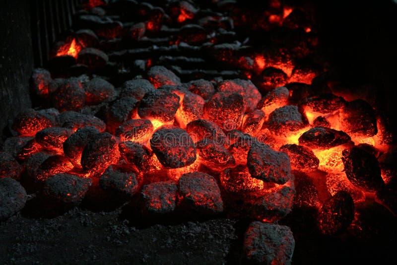 Roodgloeiende steenkolen voor het roosteren stock foto