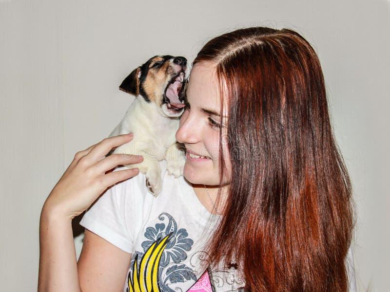 Roodharig meisje die een puppy Jack Russell houden royalty-vrije stock foto