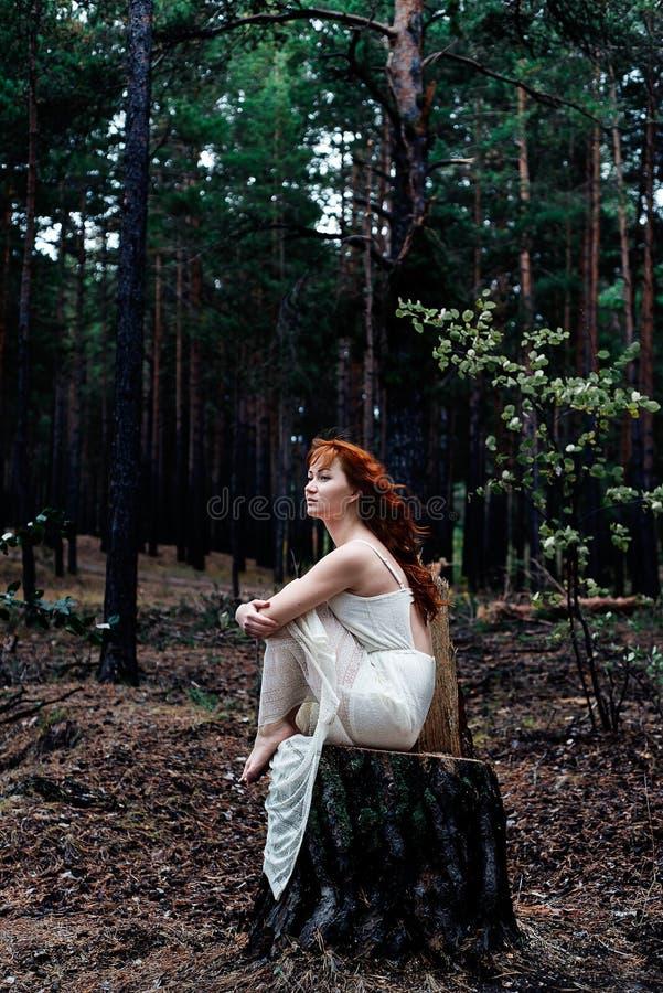 Roodharig meisje in het hout stock afbeelding