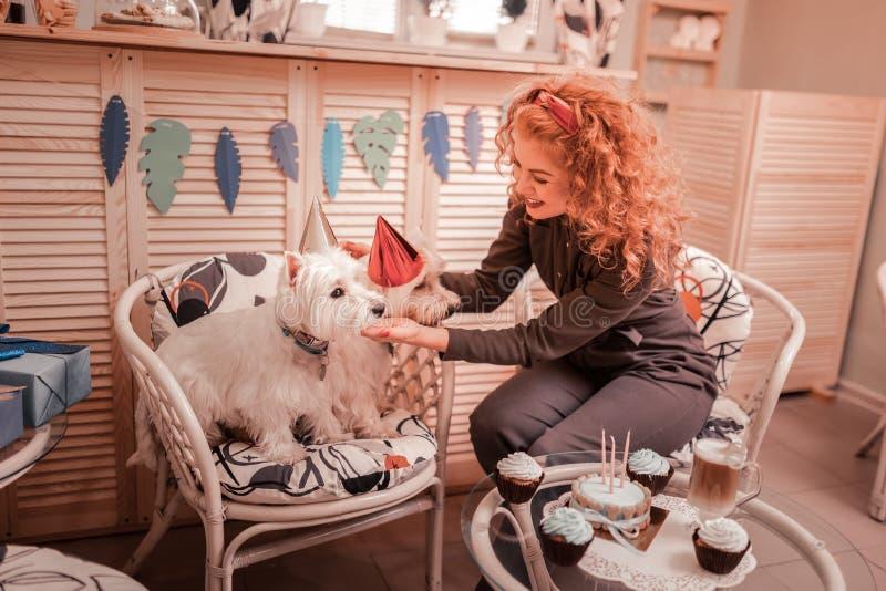 Roodharige krullende vrouw die verjaardagshoed op haar honden zetten stock fotografie