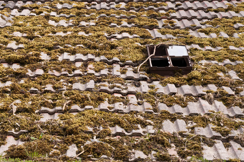 Download Roof stock image. Image of roofing, abstract, pattern - 24669019