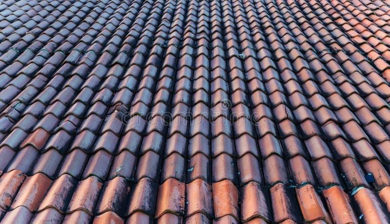 roof ceramic tiles royalty free stock photo