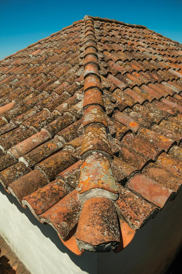 Roof covered by moss and lichens. Close-up of tiles on roof covered by moss and lichens in a sunny day at the Castle of Elvas. A gracious star-shaped fortress royalty free stock photos