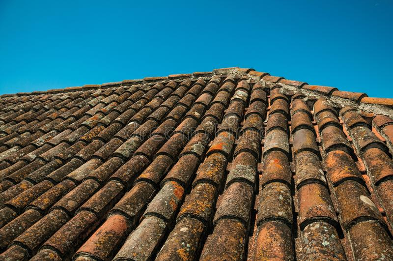 Roof covered by moss and lichens. Close-up of tiles on roof covered by moss and lichens in a sunny day at the Castle of Elvas. A gracious star-shaped fortress royalty free stock photo