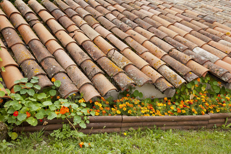 Roof and flowers stock images