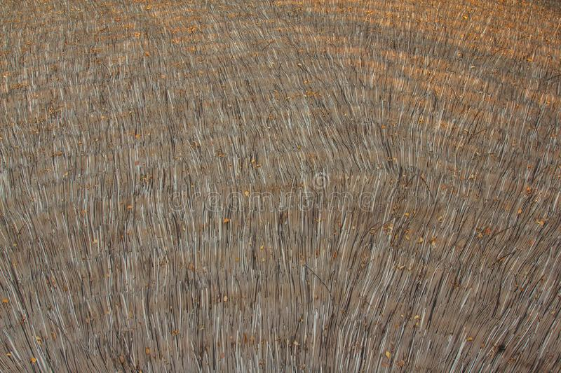 Roof hay royalty free stock photography