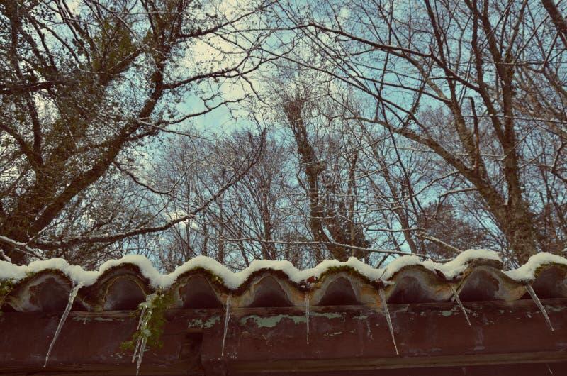 Ice snow stock images