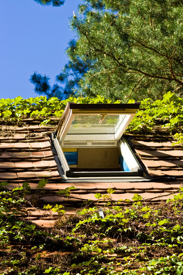Download Roof-light stock photo. Image of roof, green, window, blue - 4454196