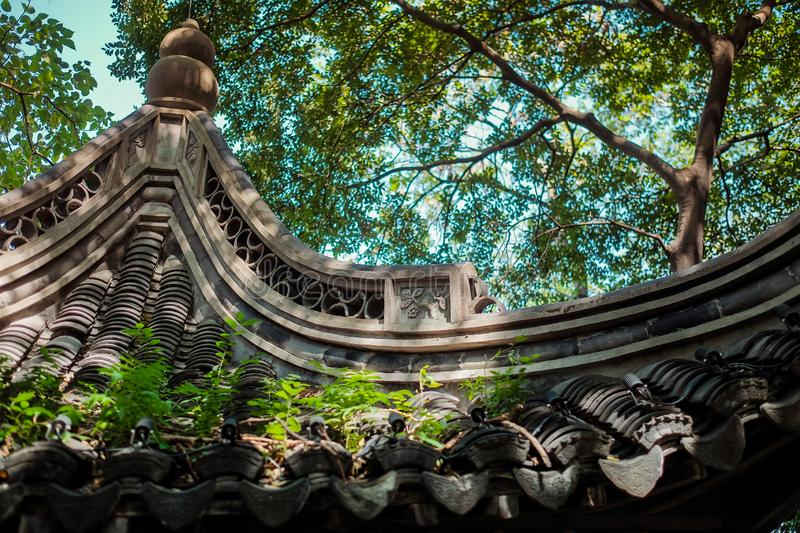 Roof of Old Chinese pavilion. In the city park with trees growing near stock image