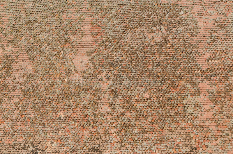 Roof Tiles Background royalty free stock photography