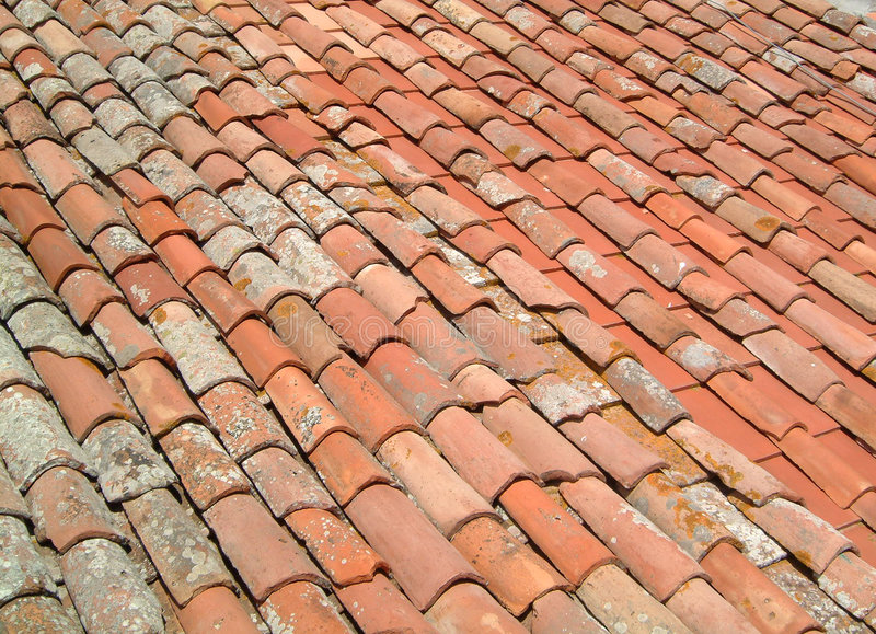 Roof tiles tuscany royalty free stock image