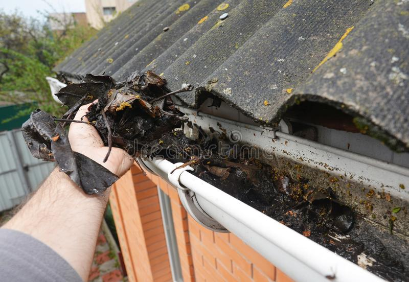 Roofer Cleaning Rain Gutter from Leaves in Spring. Roof Gutter Cleaning Tips. Clean Your Gutters Before They Clean Out Your Wallet. Gutter Cleaning royalty free stock photography