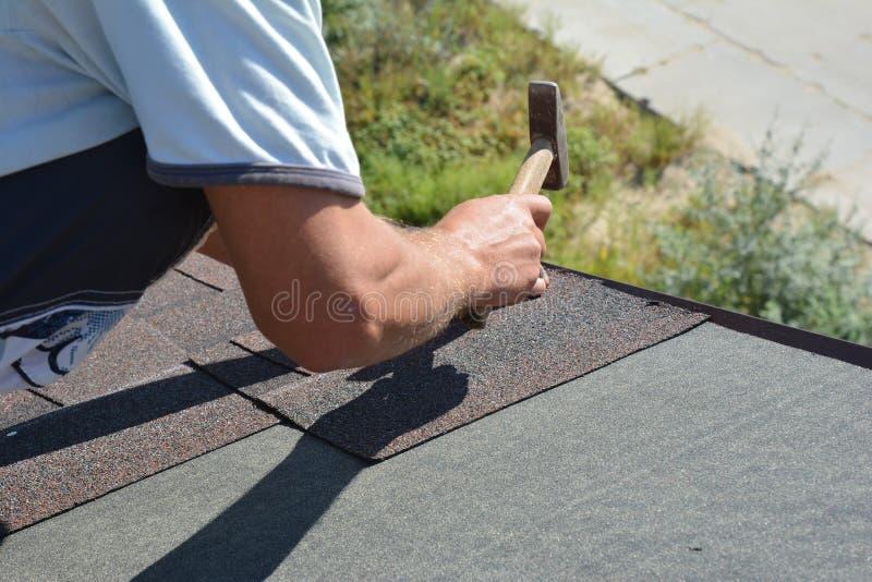 Roofer que instala Asphalt Shingles no canto do telhado da construção do telhado da casa com martelo e pregos Construção do telha imagem de stock