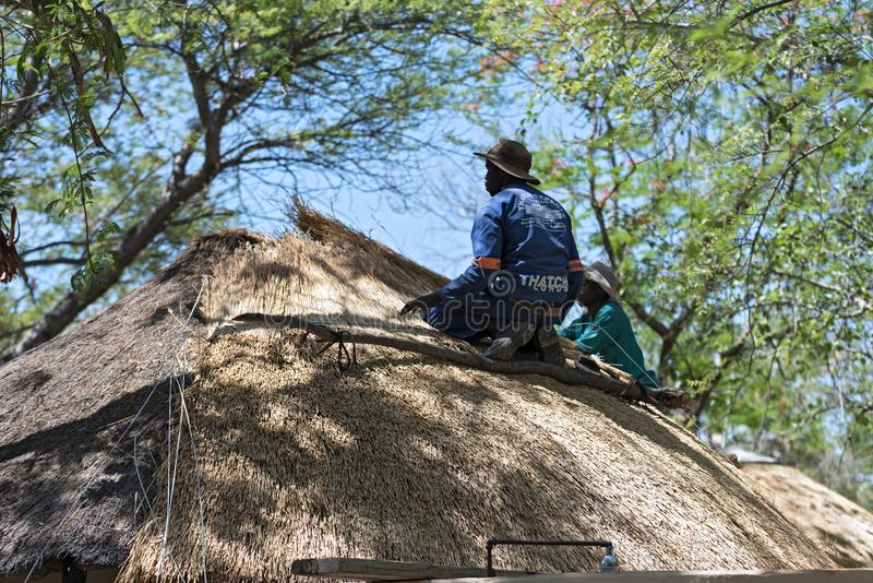 Roofer repairs the thatched roof of a house, botswana, africa.  stock photography