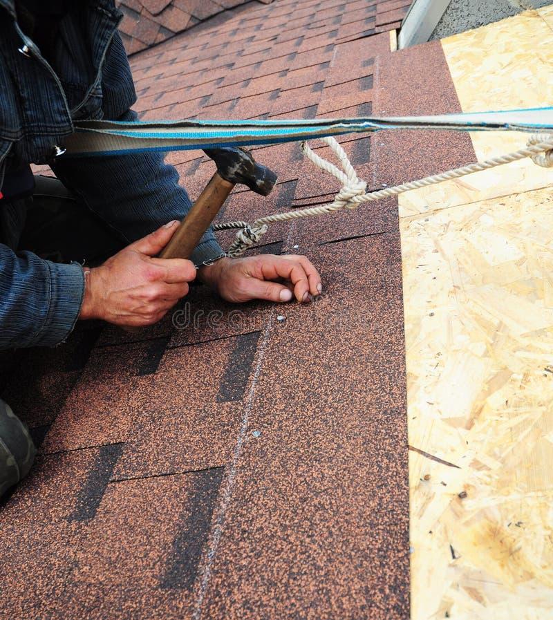 Rooferen installerar bitumentaksinglar med hammaren och spikar taklägga royaltyfria bilder