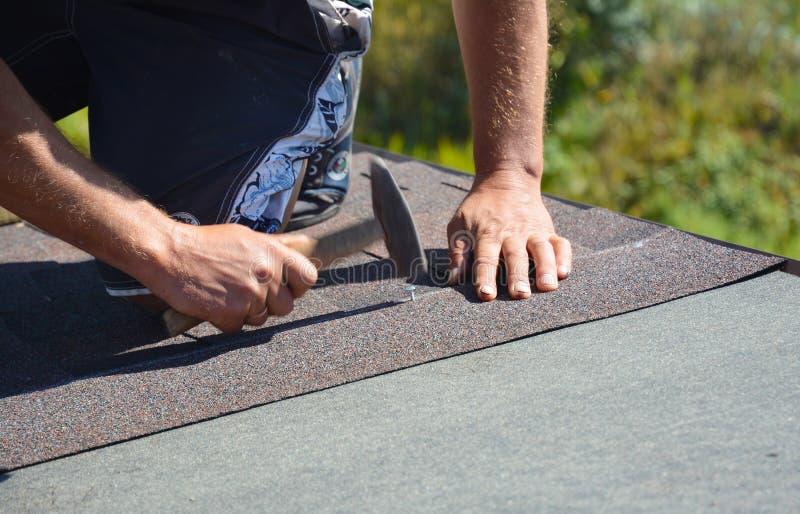 Rooferen som installerar asfaltsinglar på hörn för huskonstruktionstak med hammaren och, spikar Taklägga konstruktion royaltyfri fotografi