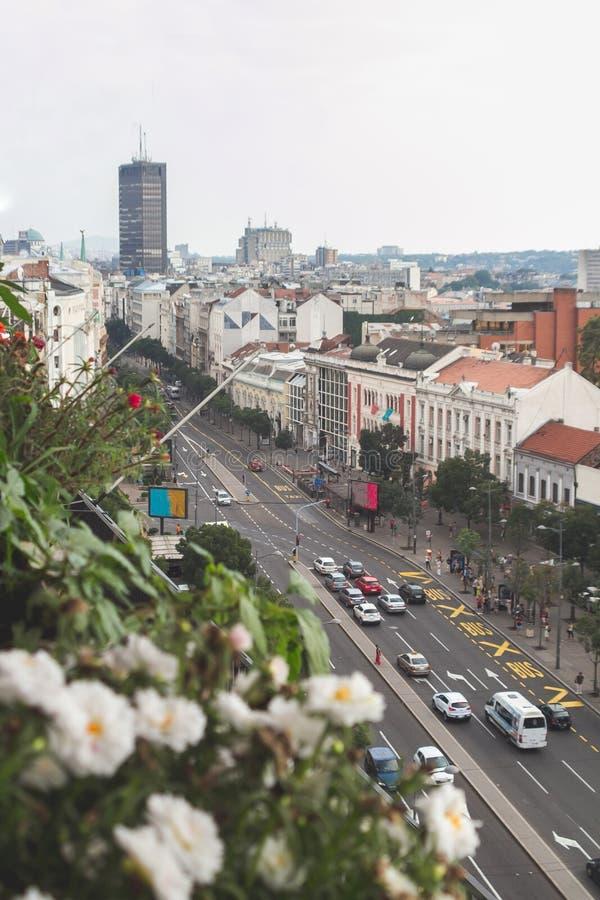 Rooftop of Belgrade, Serbia stock image