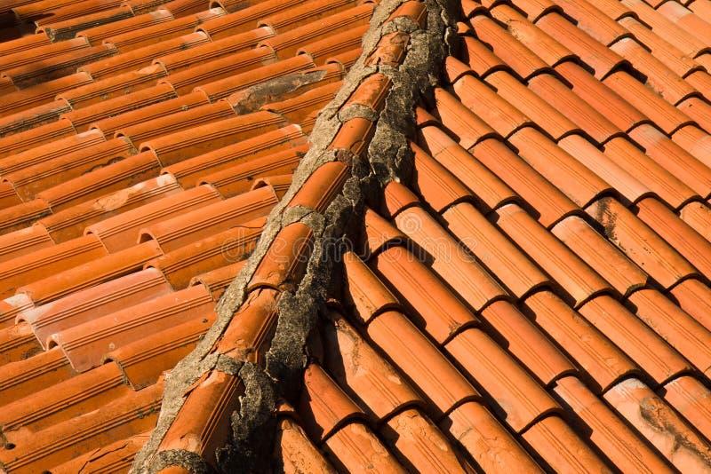 Rooftop Closeup