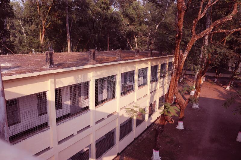 Rooftop view of a Building.Beautiful landscape and architecture of Carmichael College,Rangpur.Side view of a Building or Flat. Modern School and University stock photo