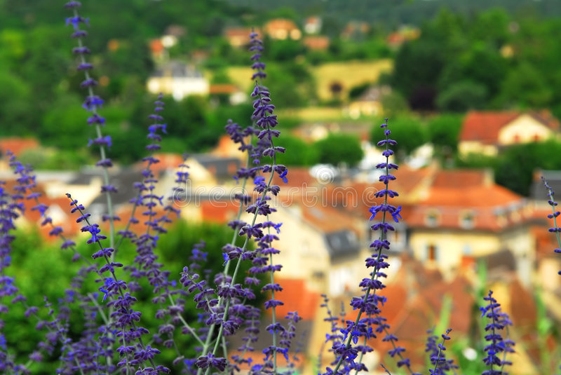 Download Rooftops in Sarlat, France stock image. Image of history - 4069303