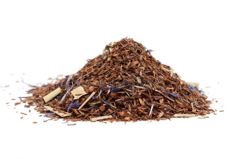 Rooibos herbata zdjęcia stock