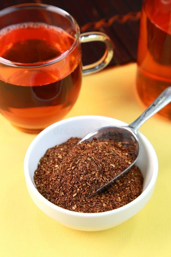 Rooibos herbata zdjęcia royalty free