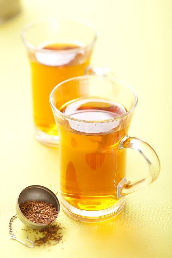 Rooibos Tee stockfotos