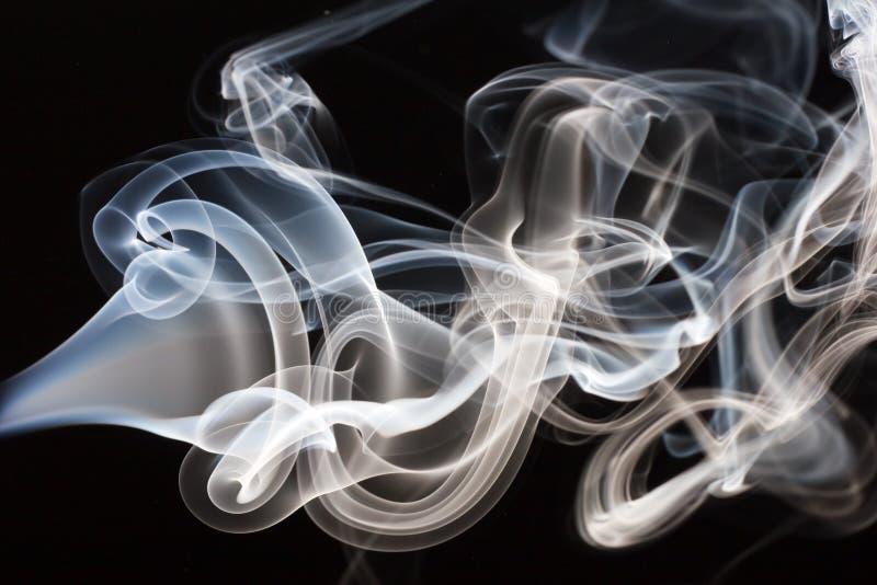 Rook stock foto