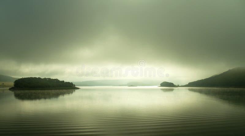 Rook die over het water toenemen stock foto's