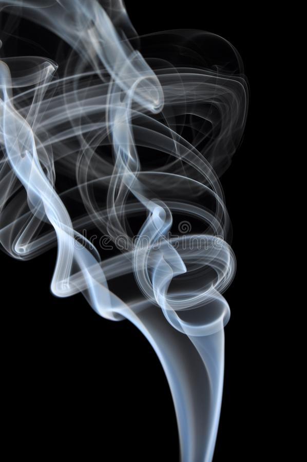 Rook op zwarte achtergrond stock foto's