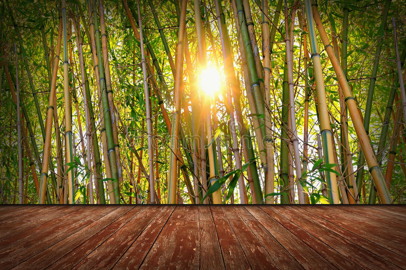 Room with bamboo wallpaper. Room design with wooden floor and bamboo wallpaper stock image