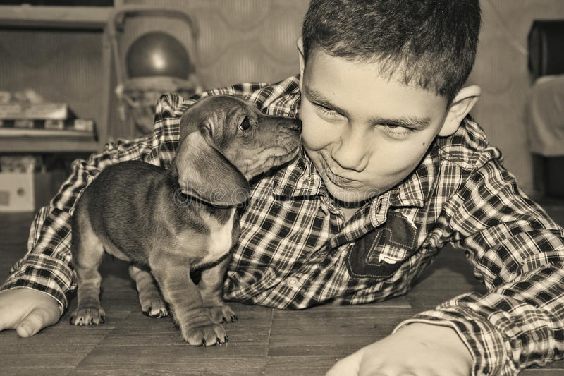 The room boy is playing with a small dog dachshund. Black and white photo stock image