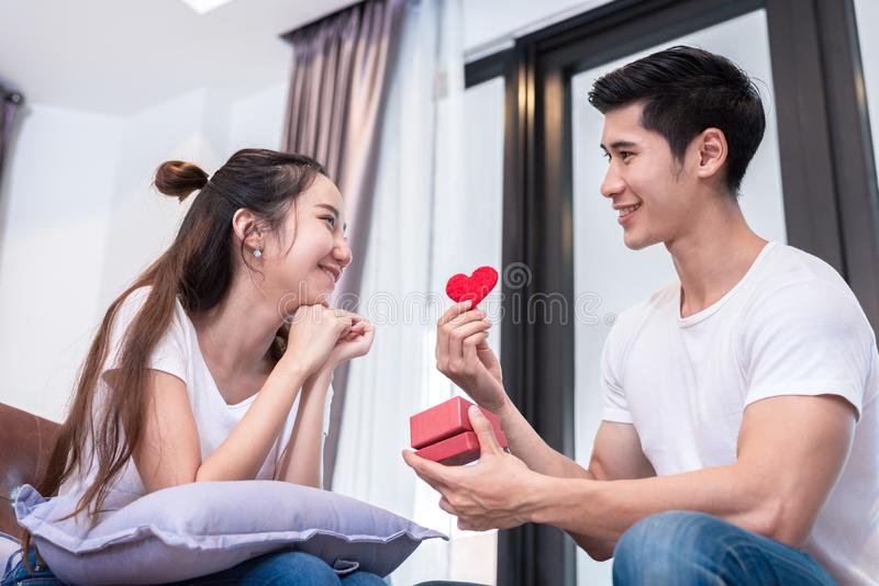 Room, living, young, happy, man, home, gift, couple, together, heart, box, surprise, sofa, people, female, person, girl, portrait stock images