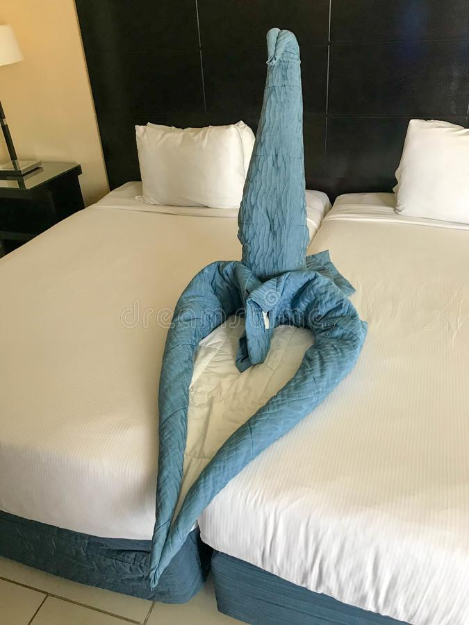 Room service in a room with retracted beds and a heart figure and a swan made of blankets, bedspreads on vacation in a tropical wa stock photography