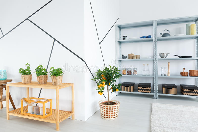 Room with shelves in apartment royalty free stock photography