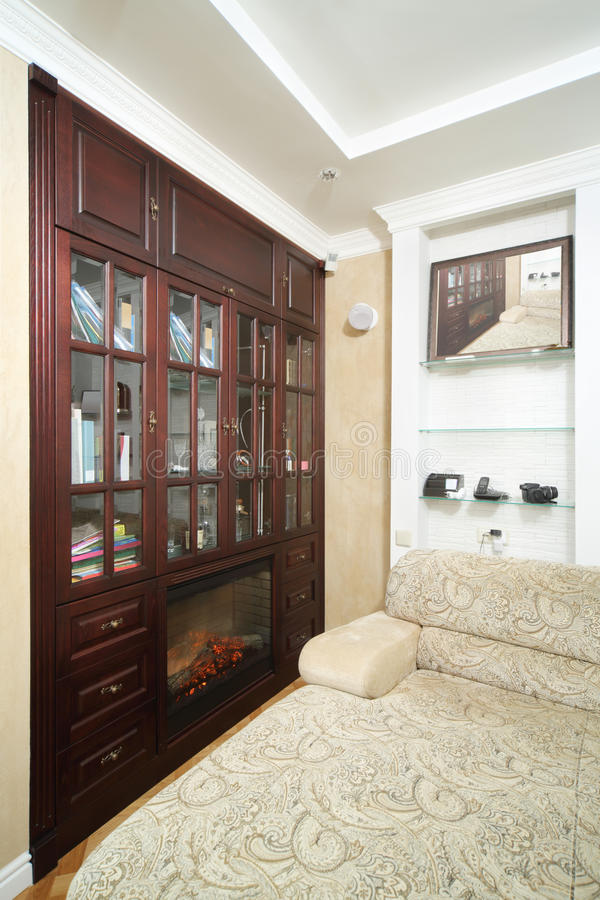 Room With Sofa, Big Wooden Bookcase With Fireplace Stock