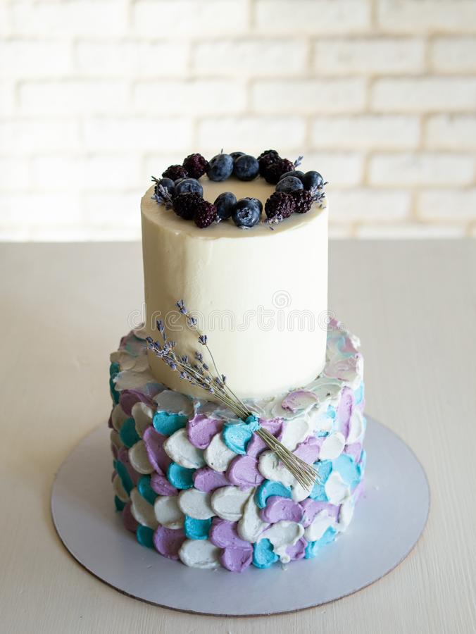 Roomcake op twee niveaus in blauw-grijs-lilac die kleuren, met bosbessen en twijgen van lavendel op zwarte tribune wordt verfraai royalty-vrije stock fotografie