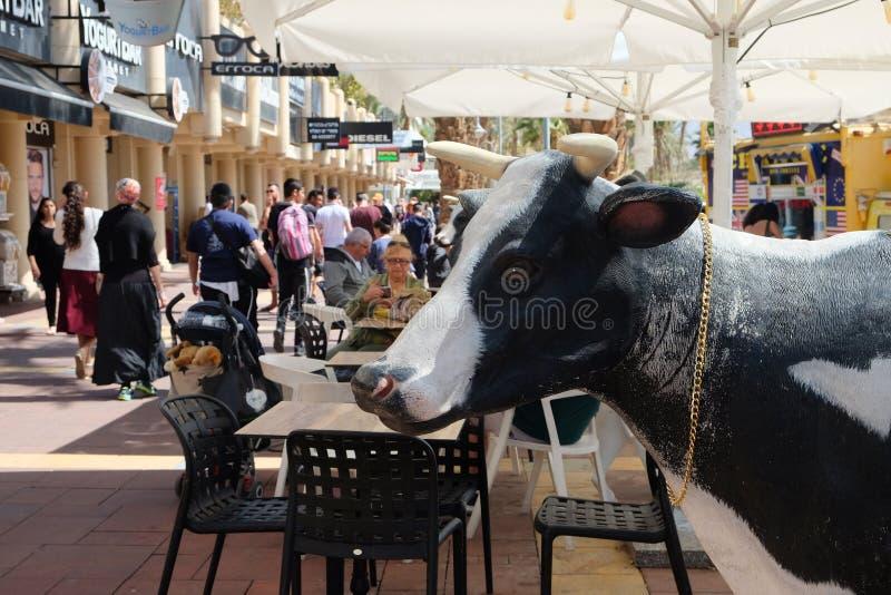 Roomijskoffie met koeien in Eilat stock afbeeldingen