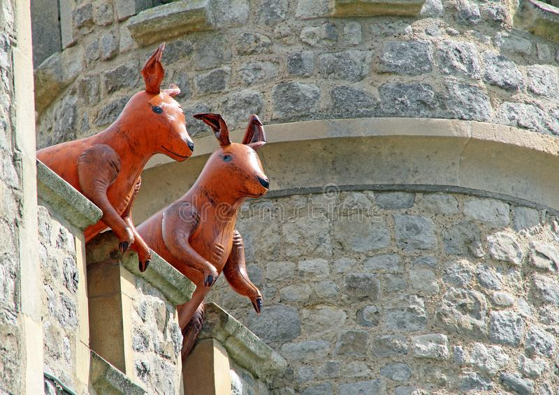 Roos guarding the tower unseen reality royalty free stock image
