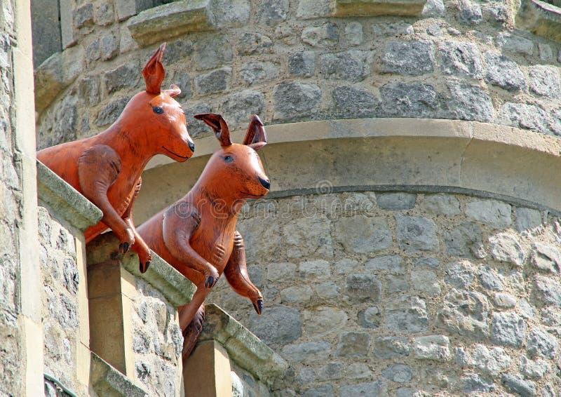 Roos som bevakar den osedda verkligheten för torn royaltyfri bild