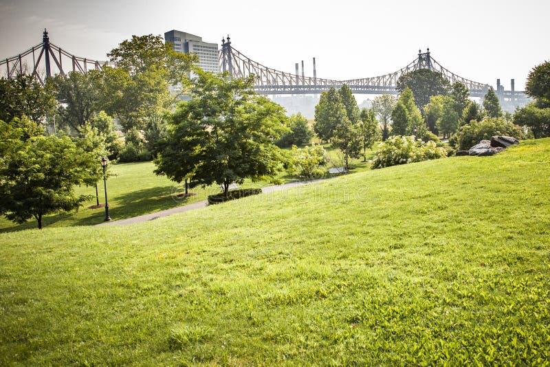 Roosevelt Island-park met NYC op achtergrond royalty-vrije stock afbeeldingen