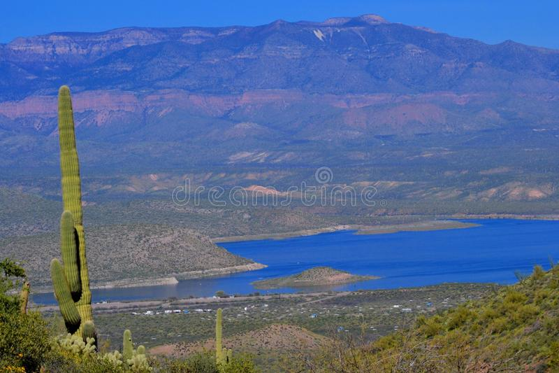 Roosevelt Lake Vista imagem de stock royalty free