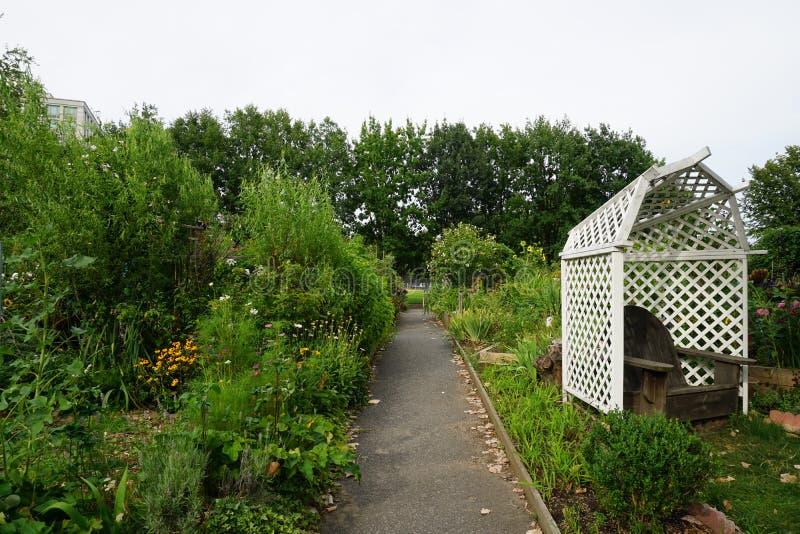 Roosevelt wyspy ogródu klub 4 zdjęcie royalty free