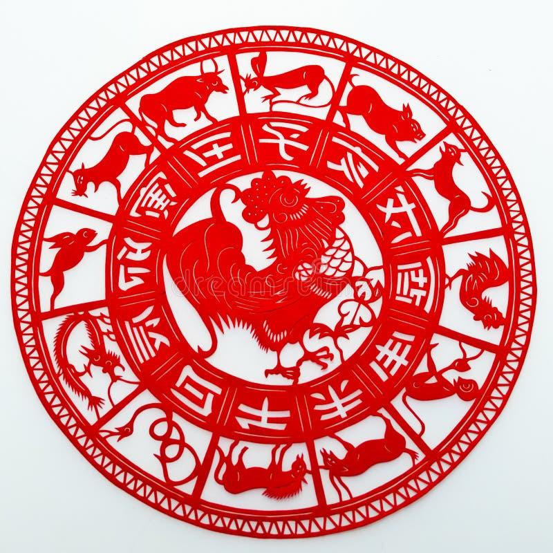 rooster royaltyfria foton